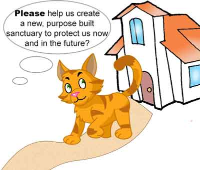Feline Fund Project - Raising Funds to build a new cat rescue centre